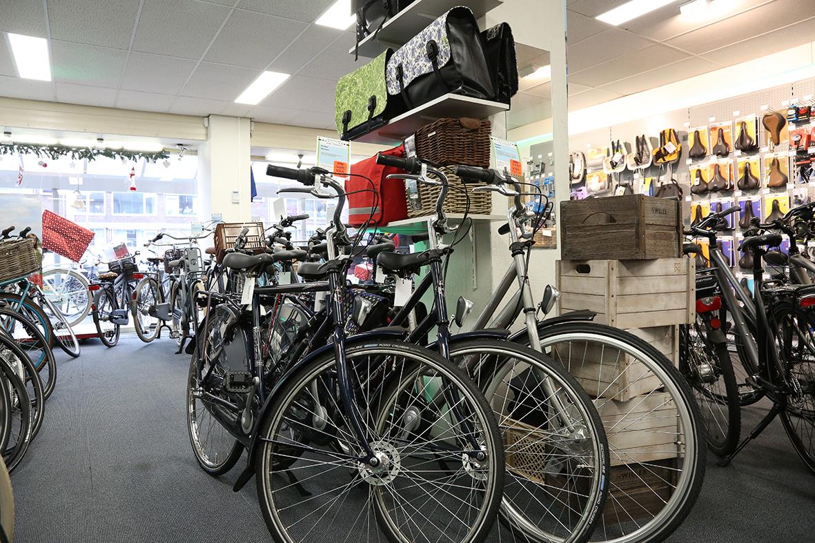 Pointer en Gazelle fietsen